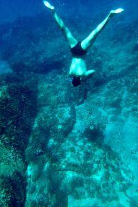 Diving artborghi!