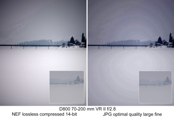d800_NEF_vs_jpg