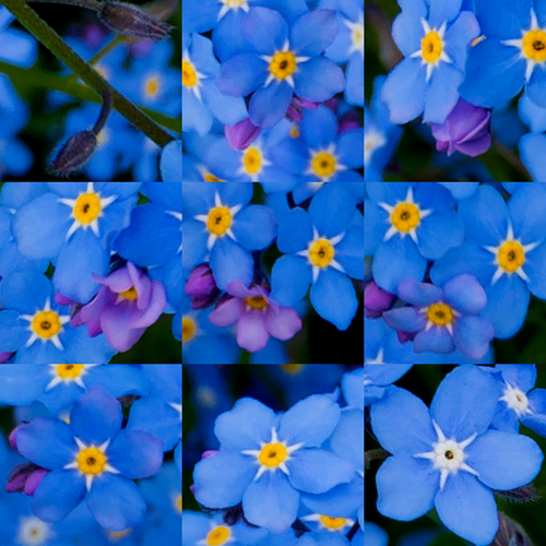 artborghi - forget me not - stages of development