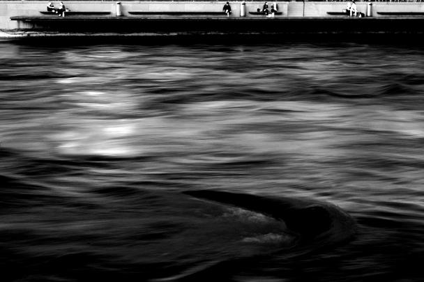 artborghi-black-flood-2