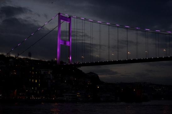 artborghi-istanbul-bosphorus-2