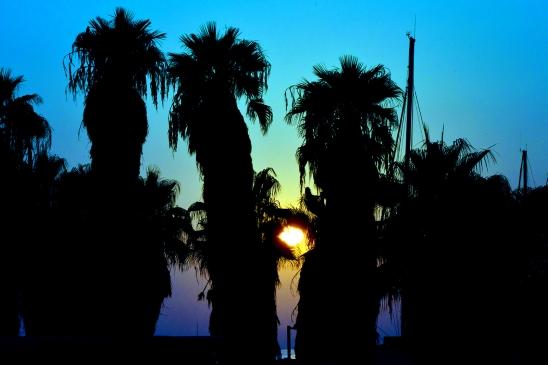 artborghi-telaviv-beach-side-2