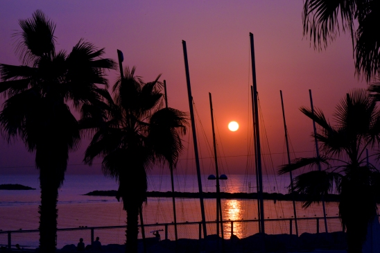 artborghi-telaviv-beach-side-3