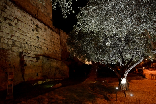 artborghi-jerusalem-by-night-6