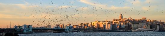 fishing-harbor-istanbul-artborghi-2