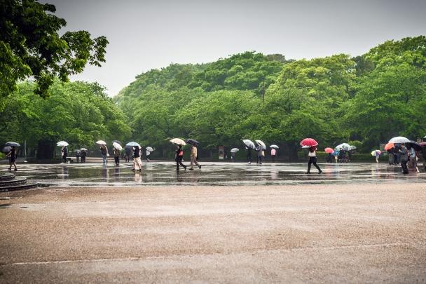 Umeo gardens, Tokyo