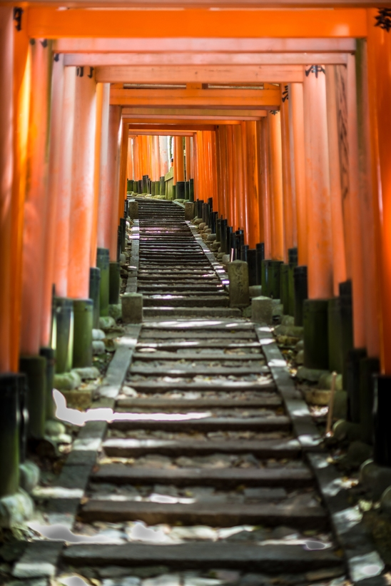 The thousand torii of Fushimi Inari Shrine, Kyoto